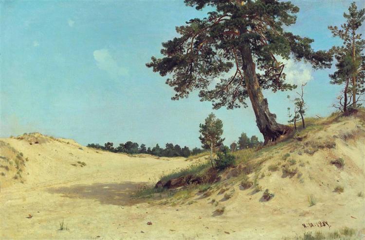 pine-on-sand-1884.jpg!large
